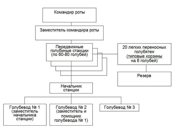 http://sa.uploads.ru/t/5Unpw.jpg