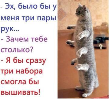 http://sa.uploads.ru/t/6Naq5.jpg