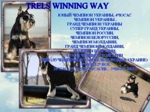 http://sa.uploads.ru/t/6TYJq.jpg