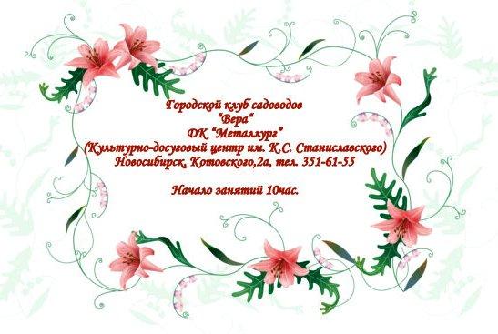 http://sa.uploads.ru/t/6ySEL.jpg