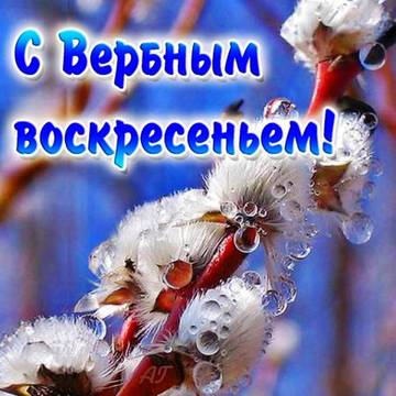 http://sa.uploads.ru/t/7NMhD.jpg