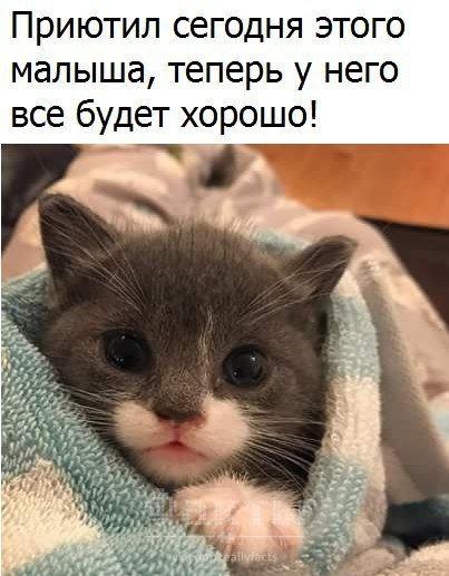 http://sa.uploads.ru/t/7Wmpf.jpg