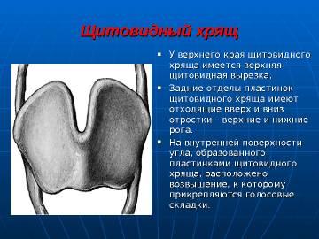 http://sa.uploads.ru/t/7jBDw.jpg