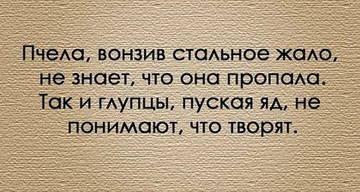http://sa.uploads.ru/t/8ZvnH.jpg