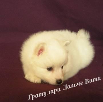 http://sa.uploads.ru/t/8opfH.jpg