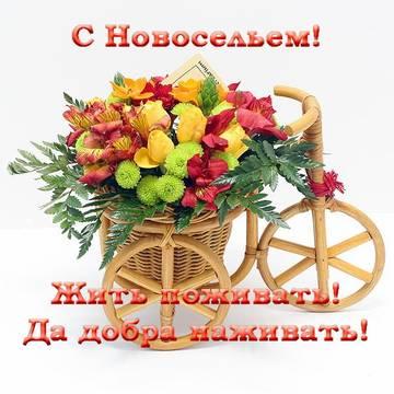 http://sa.uploads.ru/t/91eFQ.jpg