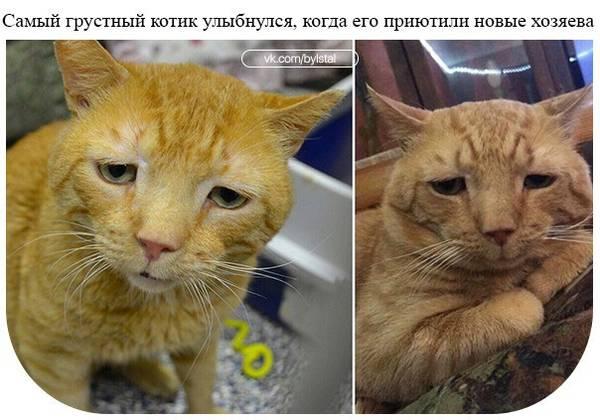 http://sa.uploads.ru/t/98jr0.jpg