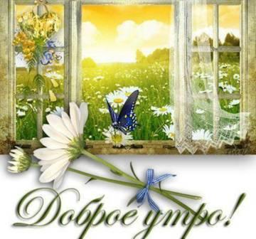http://sa.uploads.ru/t/9IvR5.jpg