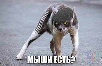 http://sa.uploads.ru/t/AzYhN.jpg