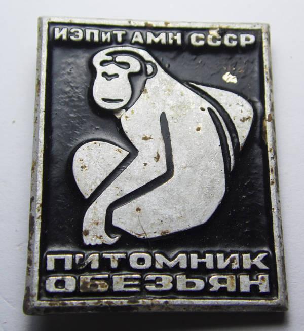 http://sa.uploads.ru/t/BJys3.jpg