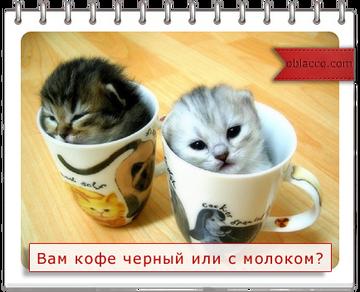 http://sa.uploads.ru/t/BPmjp.png