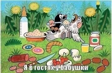 http://sa.uploads.ru/t/Ba20P.jpg