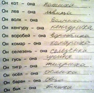 http://sa.uploads.ru/t/BawFG.jpg