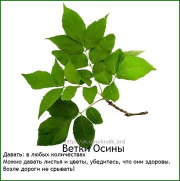 http://sa.uploads.ru/t/CDS7A.jpg