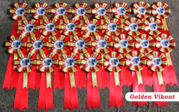 Наградные розетки на заказ от Golden Vikont DPVOF