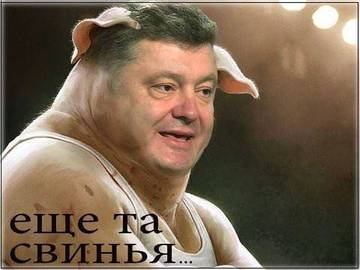 http://sa.uploads.ru/t/EBkTU.jpg