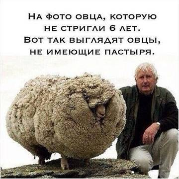 http://sa.uploads.ru/t/EDb0I.jpg