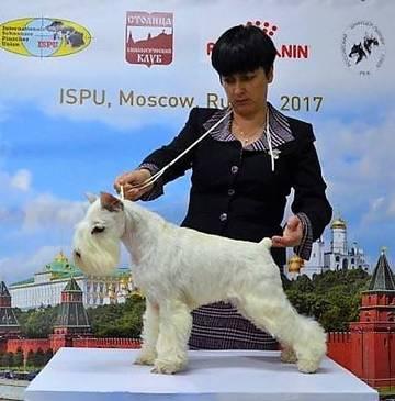 http://sa.uploads.ru/t/EGNXd.jpg