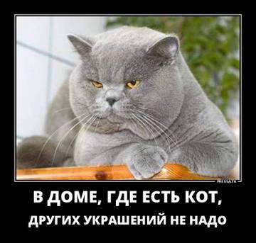 http://sa.uploads.ru/t/EL0Hp.jpg