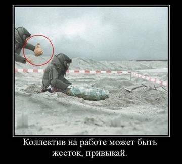 http://sa.uploads.ru/t/EXNaF.jpg