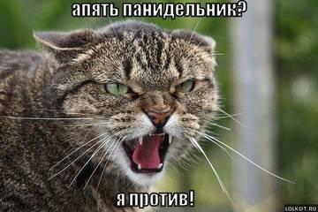http://sa.uploads.ru/t/EeJrp.jpg