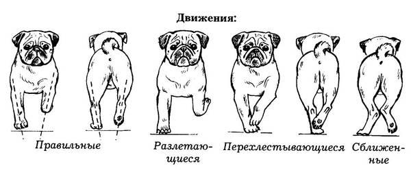 http://sa.uploads.ru/t/FEMPR.jpg