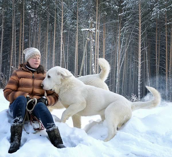 http://sa.uploads.ru/t/Fyume.jpg