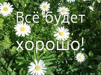 http://sa.uploads.ru/t/GsuSt.jpg