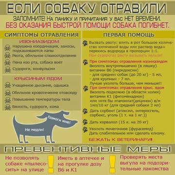 http://sa.uploads.ru/t/GtL0N.jpg