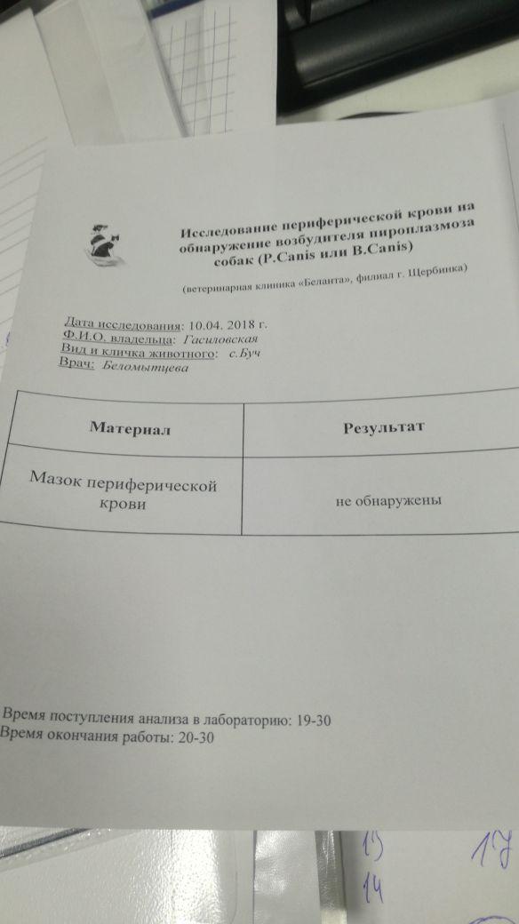 http://sa.uploads.ru/t/HGJxy.jpg