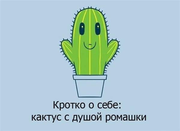 http://sa.uploads.ru/t/HTeap.jpg