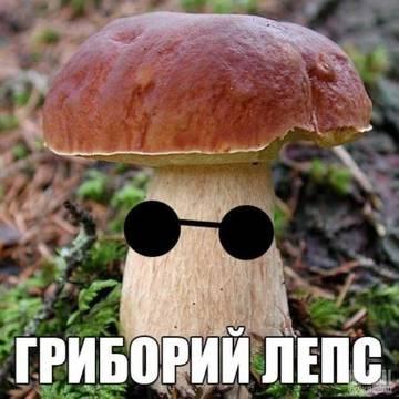 http://sa.uploads.ru/t/HiCtc.jpg