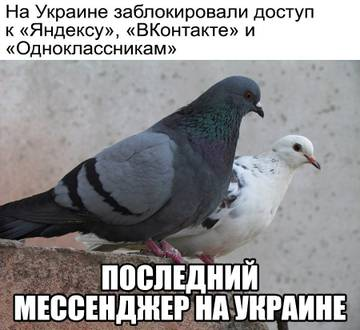 http://sa.uploads.ru/t/IRSKO.jpg