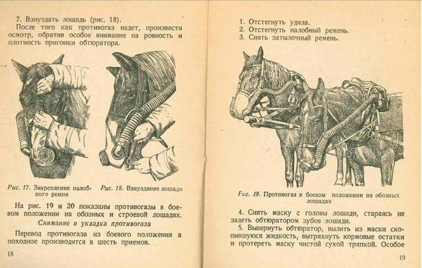 http://sa.uploads.ru/t/JpBnk.jpg