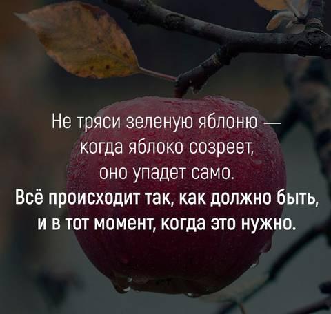 http://sa.uploads.ru/t/L7FJ2.jpg