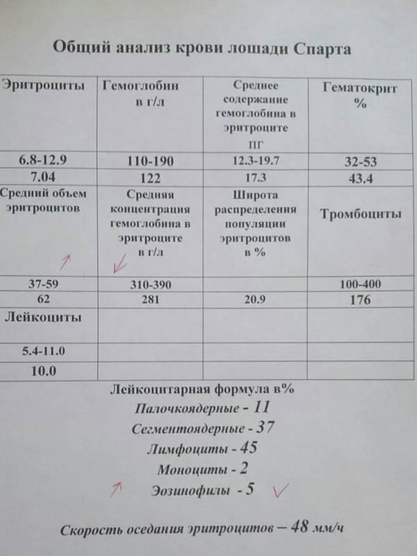 http://sa.uploads.ru/t/LlMaK.jpg