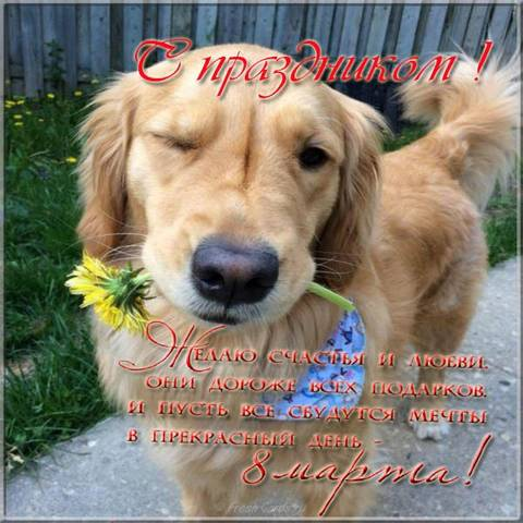 http://sa.uploads.ru/t/NWxjo.jpg