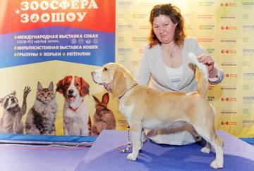 http://sa.uploads.ru/t/NbcPY.jpg