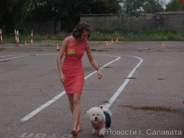 http://sa.uploads.ru/t/OHTLJ.jpg