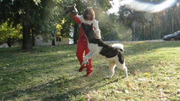 http://sa.uploads.ru/t/OdJla.jpg