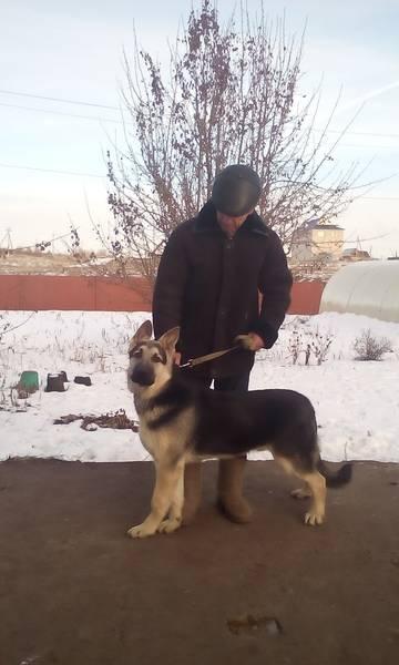 http://sa.uploads.ru/t/PQbcO.jpg