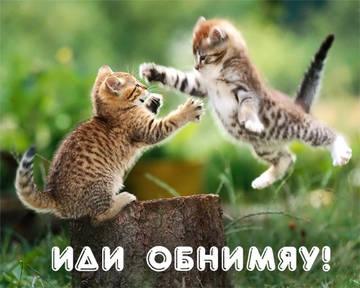 http://sa.uploads.ru/t/PkRNY.jpg