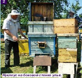http://sa.uploads.ru/t/Pu3YI.jpg
