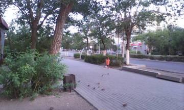 http://sa.uploads.ru/t/QuwVo.jpg