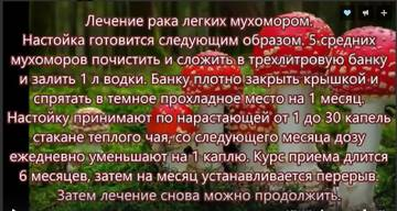 http://sa.uploads.ru/t/RbnOD.jpg