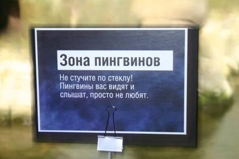 http://sa.uploads.ru/t/RmlFH.jpg