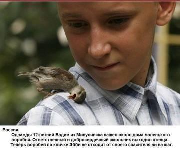 http://sa.uploads.ru/t/SJK6Q.jpg