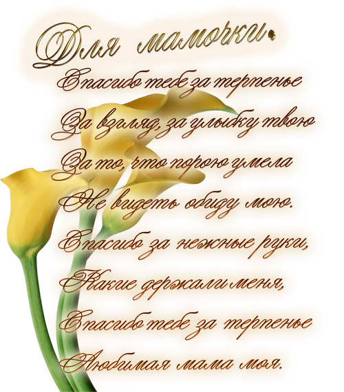 http://sa.uploads.ru/t/SPaMq.png