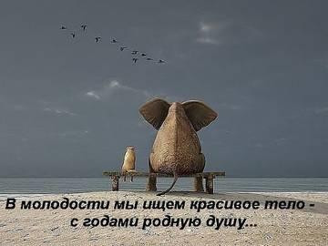 http://sa.uploads.ru/t/SXLGR.jpg