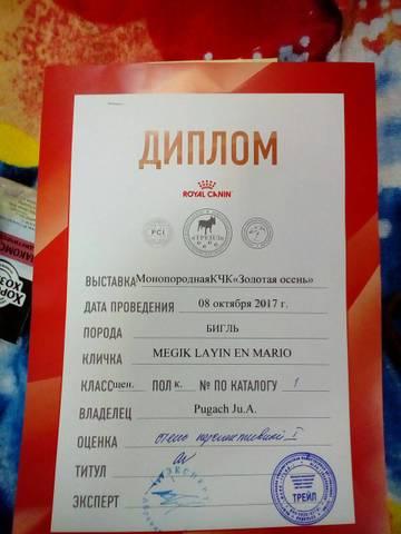http://sa.uploads.ru/t/ShNv1.jpg